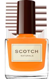 Scotch-Wildflower