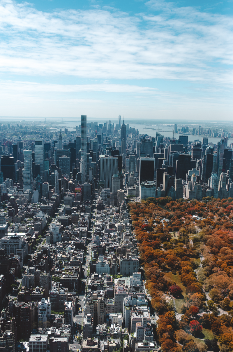 Seniors in The City: Fun Things To Do in NYC