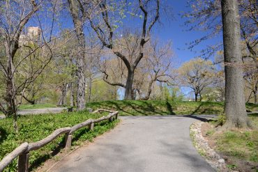 2019 Winter Tour Highlights-central park-conservancy